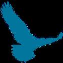 WP Soar Logo